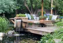 Gardens, Patios, & Backyards