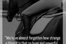 Hest med tekst