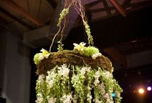 Just Hanging / by Zinnia Design Floral
