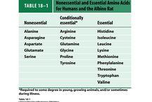Proteine Aminosäuren Eiweiß Shakes & Pulver + natürliche Quellen