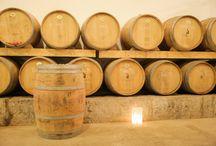 Wine Cellar / Wine Cellar - Adega de Vinhos
