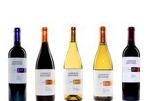 Wine/ drinks / by Marjorie Lamantia