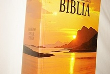 Samarenyo /Philippinean Bibles / by BIBLE WORLD