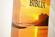 Samarenyo /Philippinean Bibles