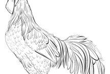 1. Zvířata