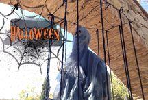 Halloween // Halloween / Nuestro resort ya está terroríficamente decorado porque la noche de las brujas está muy acerca. #Halloween