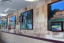 Wall Graphics / Wall graphics are a great way to add interest to your space.