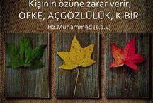 H.Z Muhammed