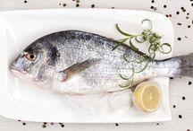 Fenntartható Halászat / Sustainable Fishing