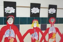 Classroom Human Body