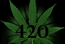 Weed 420