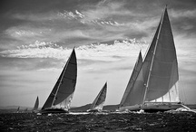 Sailing Events / by Boat International