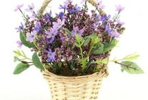 Flowers Potted - Permanent Botanicals