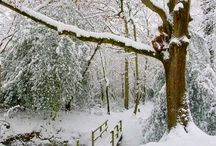 Seasons ( Winter,