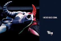 Houston Texans! / by Brooke Miller