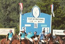 Hungarian polo club / Polo tournament in the heart of Europe Info: polomanager@magyarpoloclub.hu