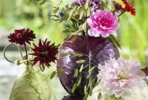 fiori e verdura