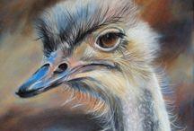 wat een mooie art vogel :-)