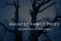 Haunted Family Trees / Psychopaths from Broken Books Thrillers