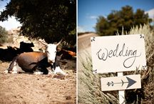Ranch Farm wedding / by Natural Nostalgia