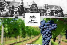 Palacio San Jacinto - Vinos con historia / Vinos Clásicos Varietales Vinos Reserva Varietales con roble Espumante
