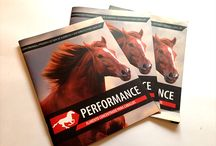 Performance / Proyectos Performance
