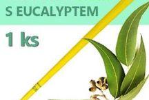 Ušní svíce HOXI / Ručně vyráběné ušní svíce s včelím voskem a protizánětlivou kurkumou, v kónickém tvaru a optimalizovanou délkou pro ještě lepší léčebný efekt.