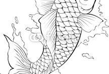 ryby ryby ryby