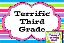 Terrific Third Grade / Terrific ideas for teaching third grade!  Pinners please pin only one paid product for every 4 ideas/freebies or you will be deleted! To be added as a pinner please email teachingintheprimarygrades (at) gmail.com