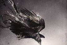 ✩ Raven ✩