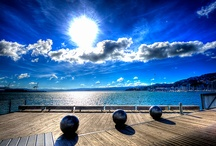 Waterfront Board / by Lucy Meiklejohn