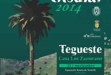 III Día de la Artesanía Insular, 2014 / 21 Y 22 de noviembreEl Cabildo de Tenerife organiza en Tegueste el Día de la Artesanía insular con numerosas actividades. La Casa de Los Zamorano acogerá durante el viernes y el sábado desfiles, talleres, una exposición y un mercado; dos jornadas cuyo objetivo es visualizar el desarrollo del sector artesano en la isla. Uno de los actos principales será el homenaje que se rendirá a la artesana María Dolores Hernández Ramos por toda una vida de dedicación y pervivencia del oficio del calado.