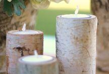 Birch Wood Decor Ideas