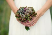 wedding inspiration / by Mary Lambkin