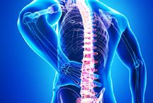 Orthopaedics: put your back in to it