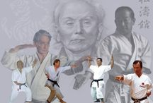 Martial Arts / For lovers of Martial Arts