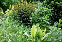 Beautiful Gardens / We love these gardens, small and large - filled with joyful color and texture!