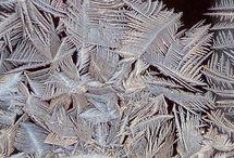 Frostflower, kuurankukka