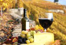 Víno-Vinice-Hrozny