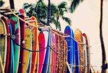 Beach Bum / by Kelly Smits