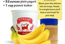 Pet Friendly Recipes