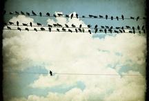 I'm different..