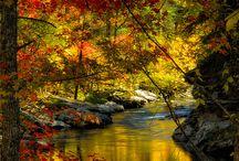 H20/rivers/streams/lake's