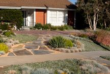 Xeriscape / Smart and responsible!