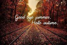 Fall / My favorite season / by Phoebe C