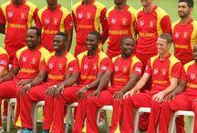 Zimbabwe cricket team icc 2015