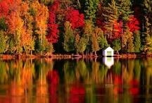Autumn I Love You / The beauty of #Autumn #fall