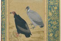 Babür Mughal