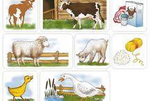 Domáce zvieratá+úžitok