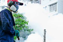 Pest Control Sydney / ASRS Pest are the Professional Pest Control Company in Sydney Area. We are Experts in Termite Control, Termite & Pest Inspections, Pre Purchase Building Inspections services.